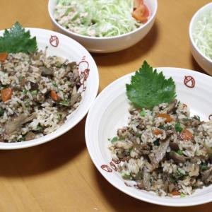 庭セロリご飯とサラダ、三升漬け