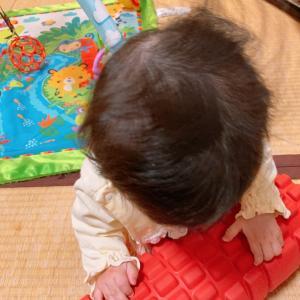 【生後6ヶ月】ハイハイマスター♡