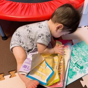 【生後8ヶ月】勉強好きに育つ!?初めての本棚
