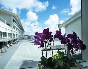 沖縄本島へ。