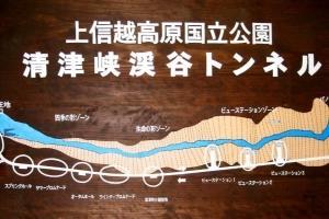 清津峡 〜 雄大豪壮 な 渓谷美 に 圧倒 されました 〜 \( ~∇~)/