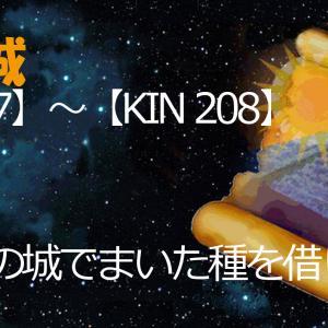 マヤ暦今日の過ごし方【KIN 193≪音11≫】(プラス)
