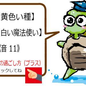 4/22(水)『自分から動こう』マヤ暦を使う感じる過ごし方【KIN 24≪音 11≫】