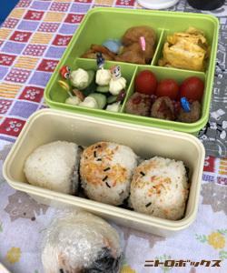 のんびりピクニック→車中泊