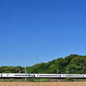 麦の秋(鹿児島本線)