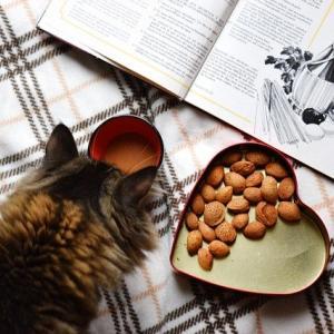 【薬膳更年期】 なかなか食事を作る気が起きない方の為の薬膳メニューとは?