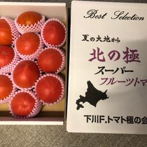 クックパッドマートでトマトを大人買い!おトクな紹介コード付き