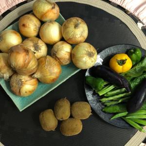 おトクに夏野菜GETクックパッドマートにハマる!紹介コード付き