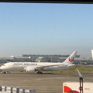 【GoTo金沢】JALに乗ったよ!子どものおもちゃGET