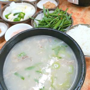 年末年始韓国5泊6日3日目に回ったコース~昼お得にお買い物!夜は楽しかった飲み会で三次会まで♪~