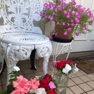 玄関先のお花達