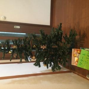 クリスマスツリーを出しました12月2日(月)🌲生徒さんにも手伝っていただきました