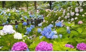 舞鶴自然文化園様とふるるファーム様楽しみました(*^^*)