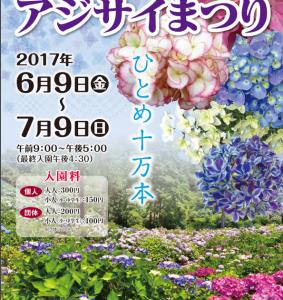いよいよ舞鶴自然文化園様のあじさい祭り開催です!