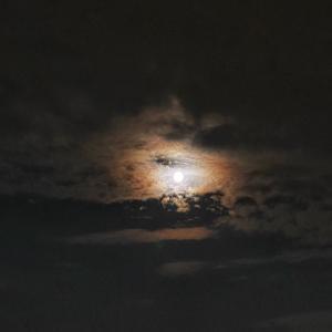 8月4日は水瓶座の満月 パワフルなエネルギーがもう流れてきてます✨