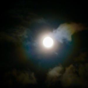 山羊座満月は繋がりを感じる時✨