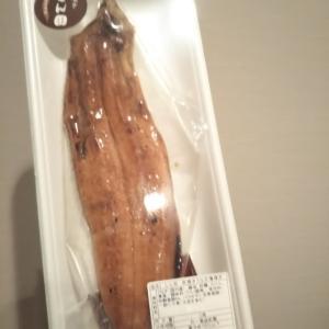 毎週鰻を食べる理由