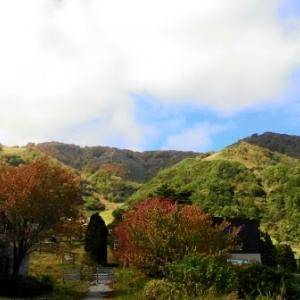【農業作業10月17日】朝晩が寒くなって紅葉の時期の白馬になってきました!