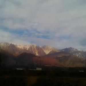 【農業作業11月11日】今度は、ブルーベリーの雪囲い!なかなか冬がやってこないけど