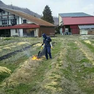 【農業作業4月4日】灯油20Lをたった一日で消費し、腕も筋肉痛なバーナー消毒作業