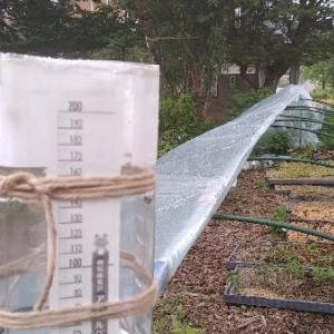 【農業作業6月12日】ヘアリーベッチのおかげで遅れてた草刈りを実行と、もう茎枯病発生