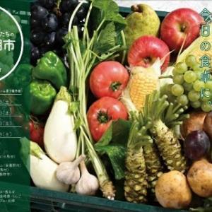 【安曇野、白馬】週末は、安曇野大王ワサビ農園の新しい市場に初出店!