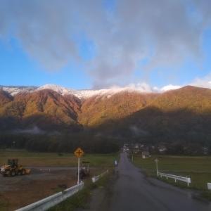 【農業作業10月下旬】山頂から雪で白、中腹は紅葉、里は緑な三段紅葉中の農作業と収穫