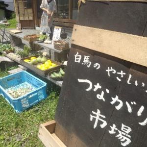 【農作業7月15日】木曜市での野菜販売もサマになってきました!