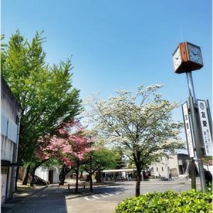 ★お写ん歩と真清田神社 in 愛知(一宮)