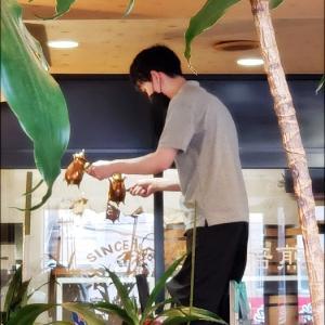★喫茶 ツヅキ   in  愛知(名古屋)