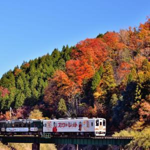 紅葉のスカーレット列車