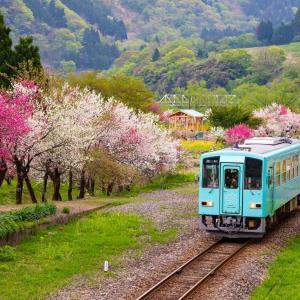 春から初夏の鉄道風景