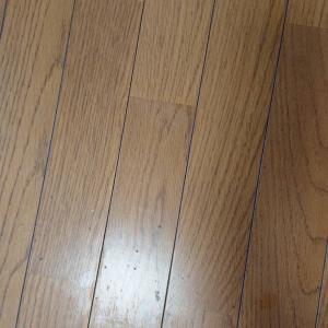 床の剥離をしてみました