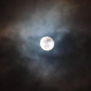 夕べの月と晩御飯 11月13日