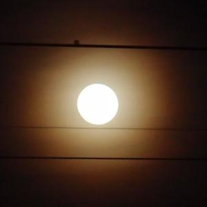 夕べの月と晩御飯 3月10日