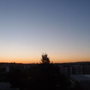 夕暮れ時は寂しそう、夕べの月、そしてブッダ・タング様 11月20日