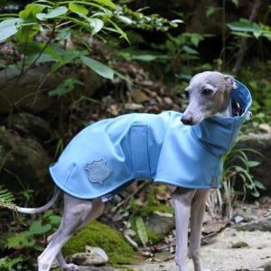 ★AJくん♪ライトブルーのレインコートがとってもお似合い|becolors online shop