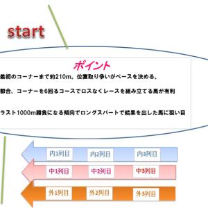 菊花賞2019穴馬予想 コース解説とトライアル考察
