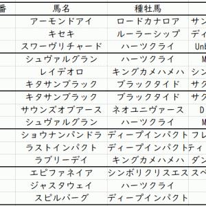 ジャパンカップ2019トニービン内包馬|追い切り(調教)よりも重要なポイント