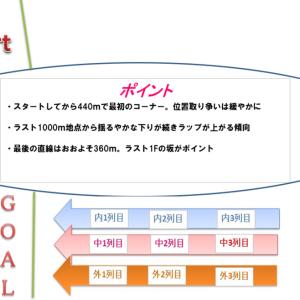 阪急杯2021調教・追い切り評価(1週前)厳選の1頭&コース解説