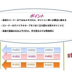 ラジオNIKKEI賞2021穴馬予想|コース解説とハンデ別考察
