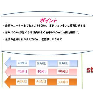 七夕賞2021穴馬予想|コース解説とハンデ別考察
