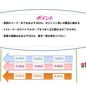 函館記念2021穴馬予想|コース解説とハンデ別考察