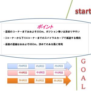 関屋記念2020調教・追い切り評価(1週前)厳選の1頭&コース解説