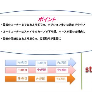 小倉記念2020調教・追い切り評価(1週前)厳選の1頭&コース解説