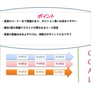 神戸新聞杯2020調教・追い切り評価(1週前)厳選の1頭&コース解説