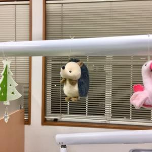 受付・診療補助スタッフさん募集します!    筑紫野市原田 のりこキッズマム歯科医院