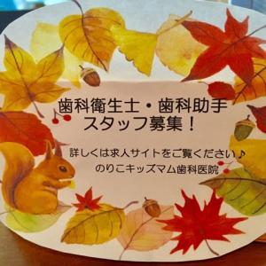 スタッフ募集!    筑紫野市 原田 のりこキッズマム歯科医院