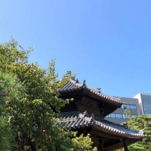 臨時休診のお知らせです  筑紫野市原田 のりこキッズマム歯科医院です