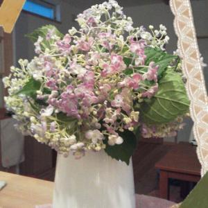 紫陽花とステンドグラス